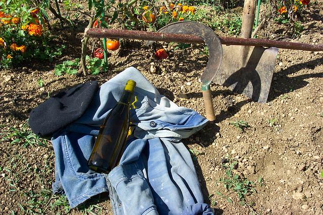 Zdrowie wprost z twojego ogródka