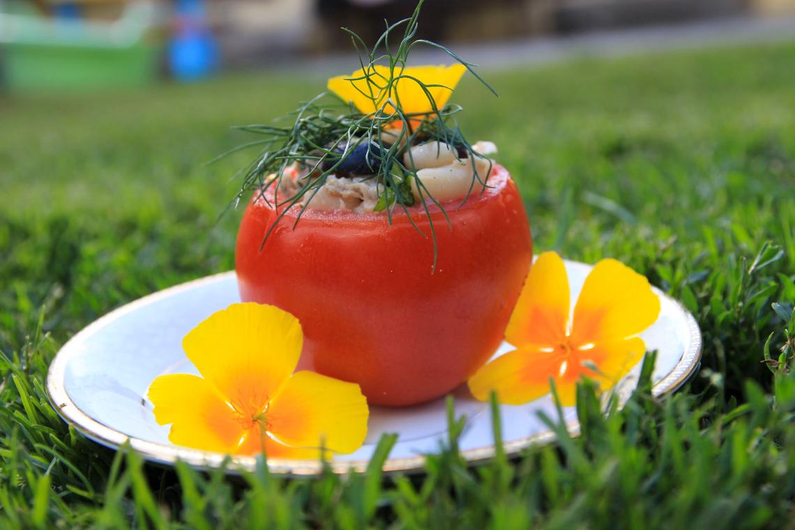 Pomidory nadziewane tuńczykiem i fasolą na zimno